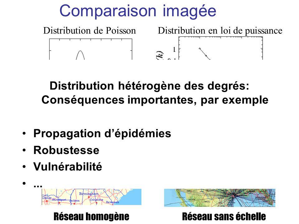 Comparaison imagée Distribution de Poisson. Réseau homogène. Distribution en loi de puissance. Réseau sans échelle.