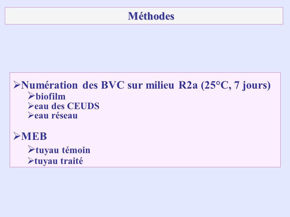 Numération des BVC sur milieu R2a (25°C, 7 jours) biofilm