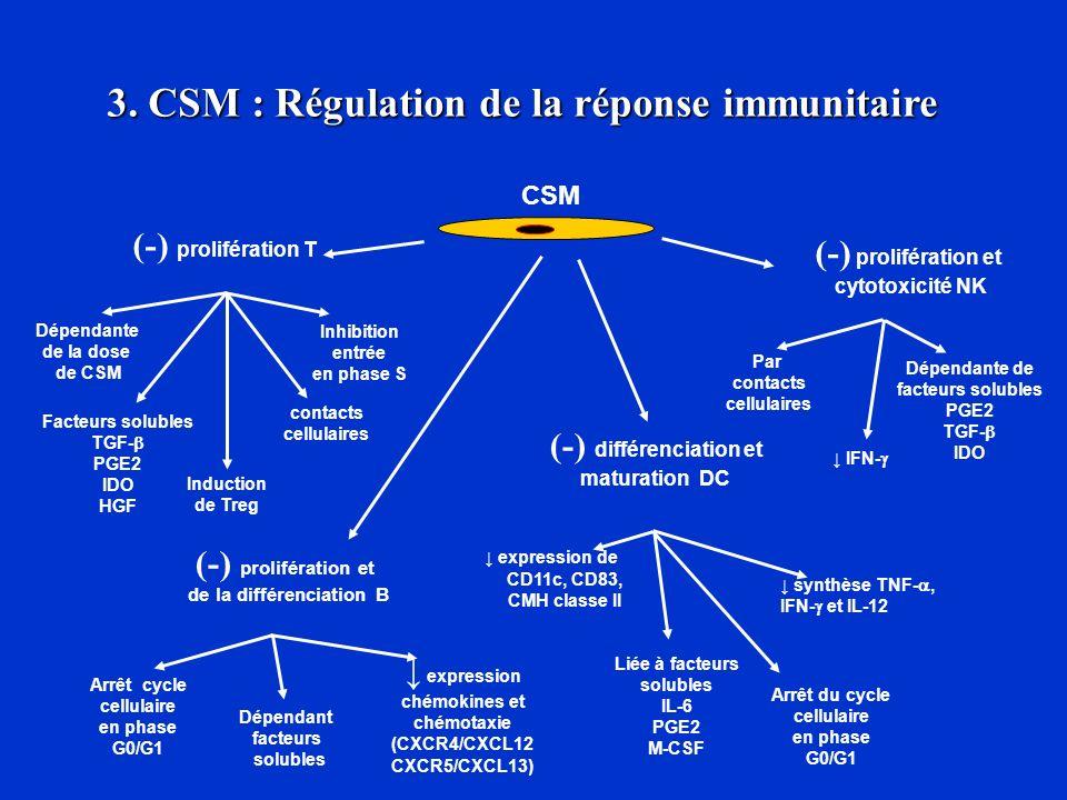 3. CSM : Régulation de la réponse immunitaire de la différenciation B
