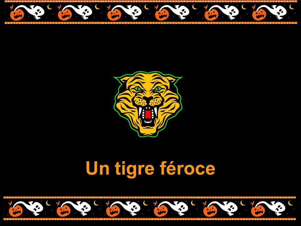 Un tigre féroce