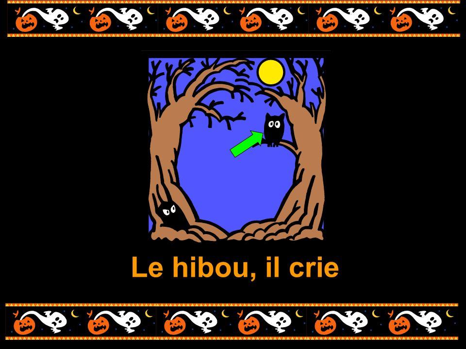 Le hibou, il crie