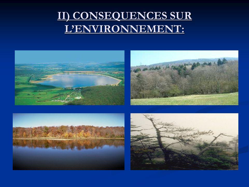 II) CONSEQUENCES SUR L'ENVIRONNEMENT: