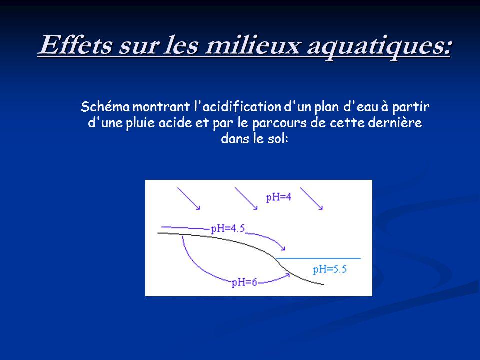 Effets sur les milieux aquatiques: