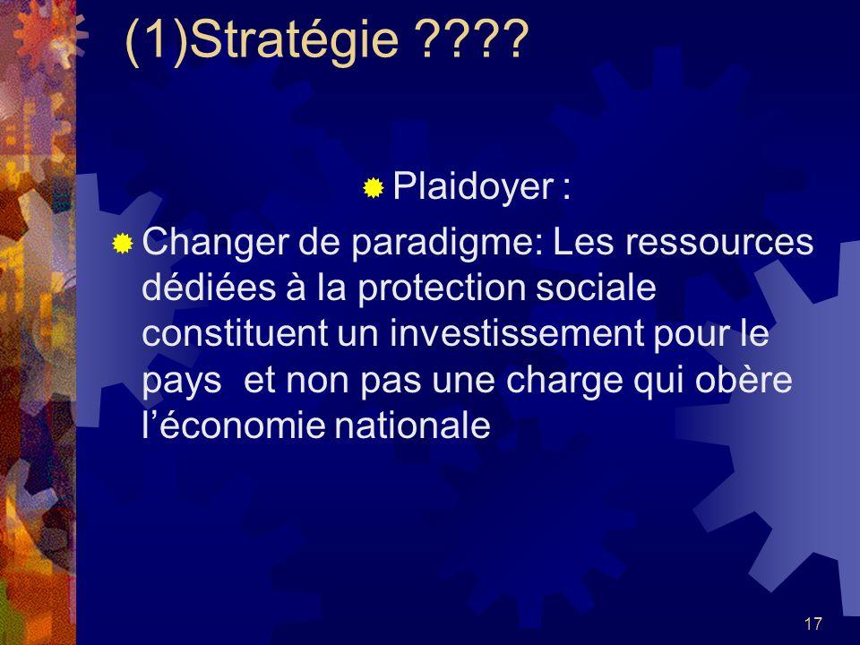 (1)Stratégie Plaidoyer :
