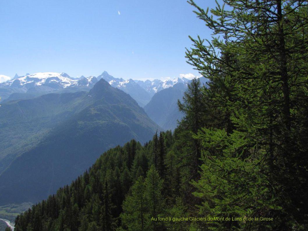 Au fond à gauche Glaciers du Mont de Lans et de la Girose