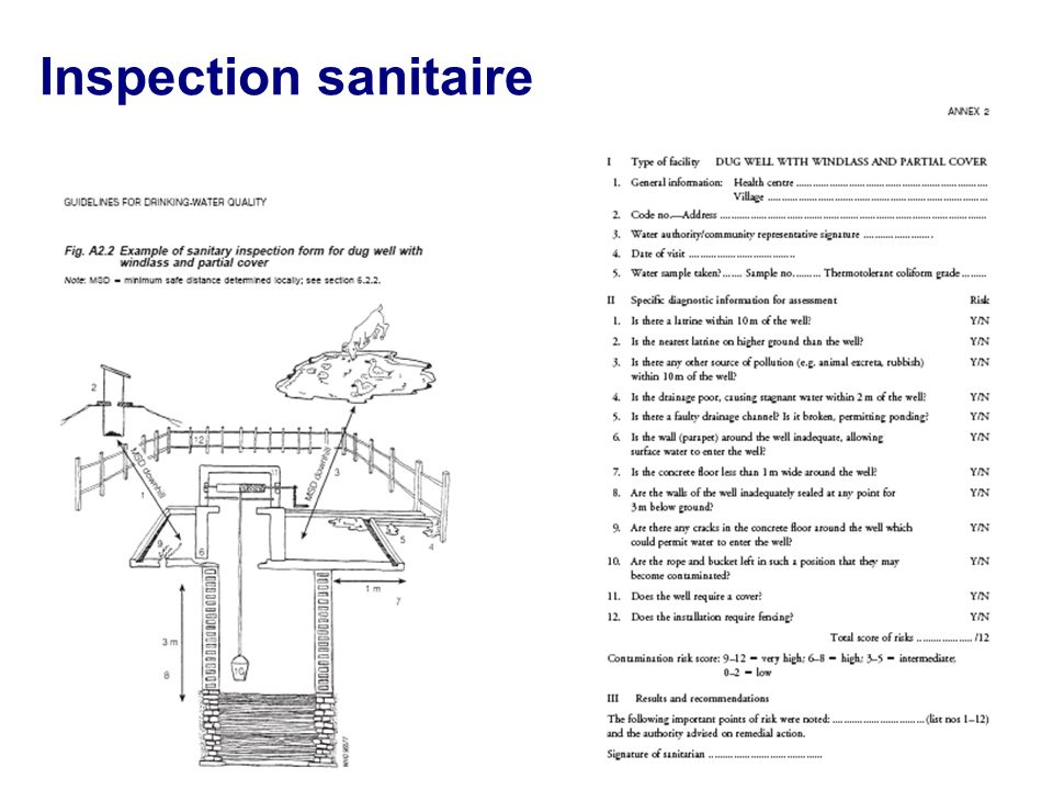 Inspection sanitaire 3 mins