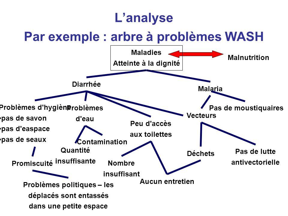 L'analyse Par exemple : arbre à problèmes WASH