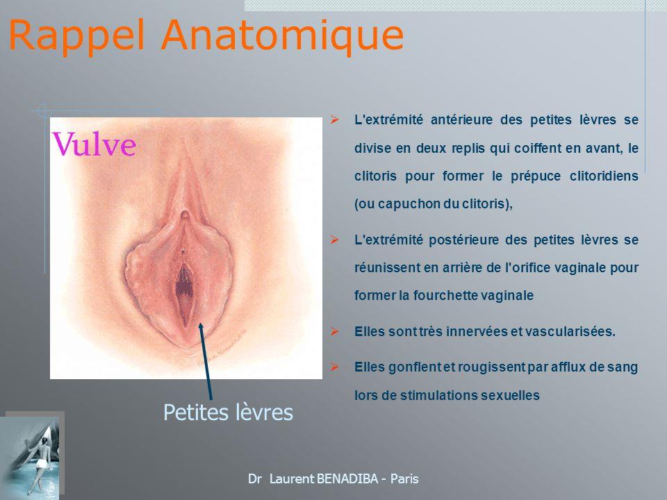 Dr Laurent BENADIBA - Paris