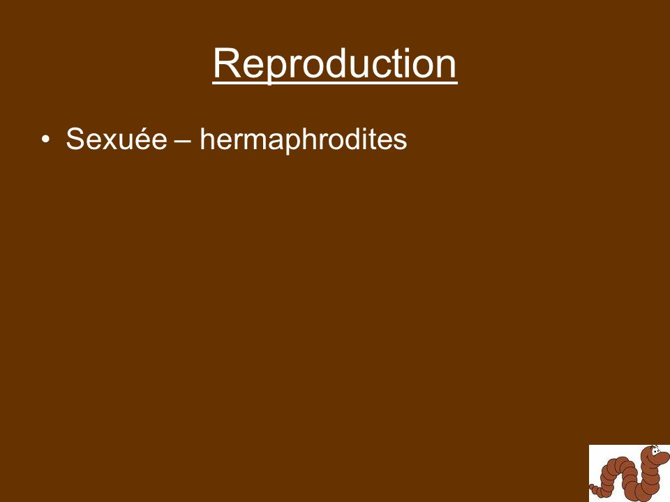 Reproduction Sexuée – hermaphrodites