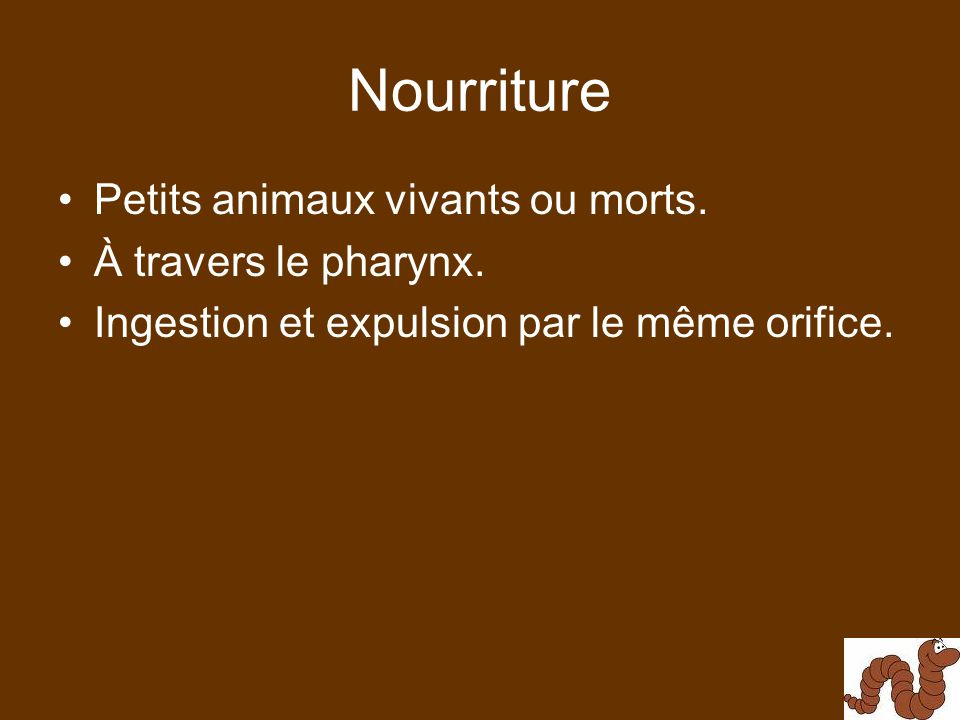Nourriture Petits animaux vivants ou morts. À travers le pharynx.