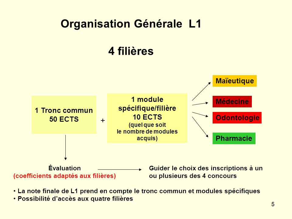 Organisation Générale L1 4 filières