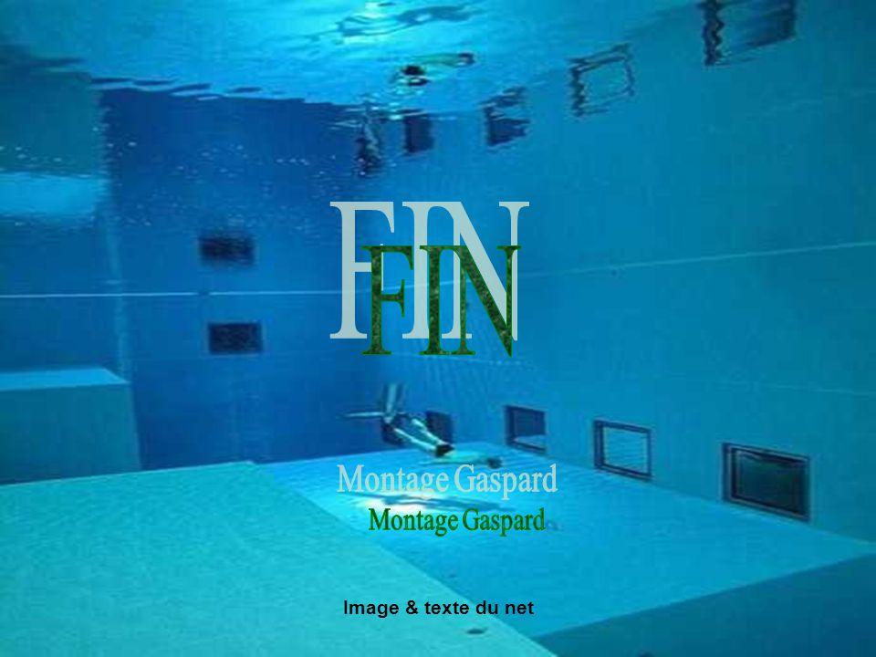 FIN Montage Gaspard Image & texte du net