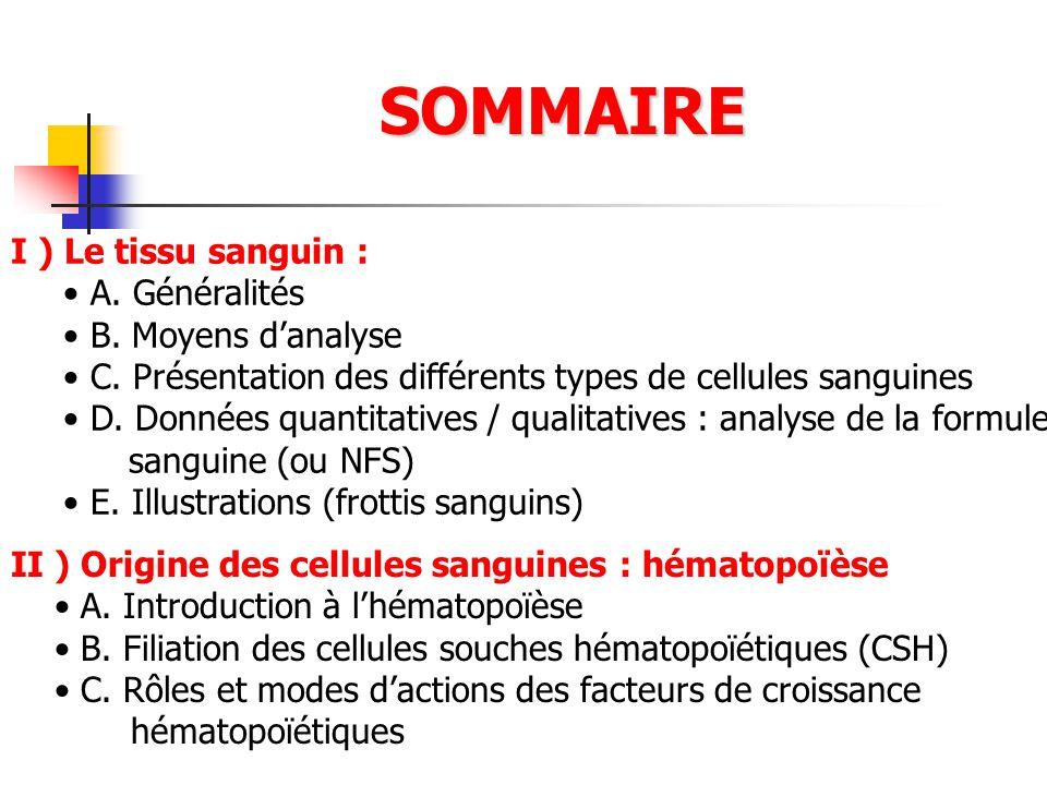 SOMMAIRE I ) Le tissu sanguin : A. Généralités B. Moyens d'analyse