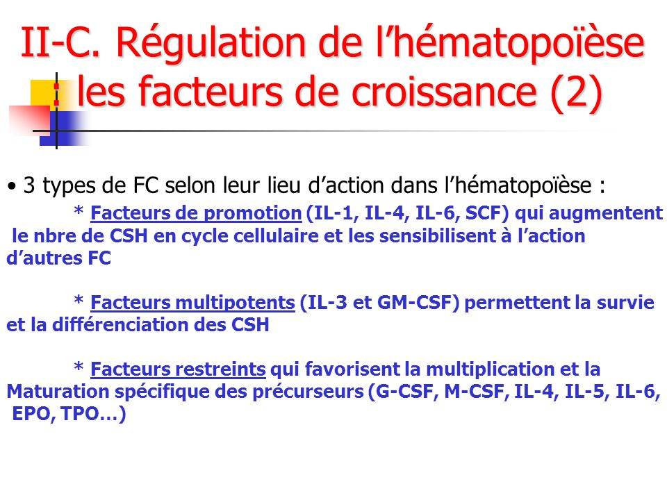 II-C. Régulation de l'hématopoïèse : les facteurs de croissance (2)