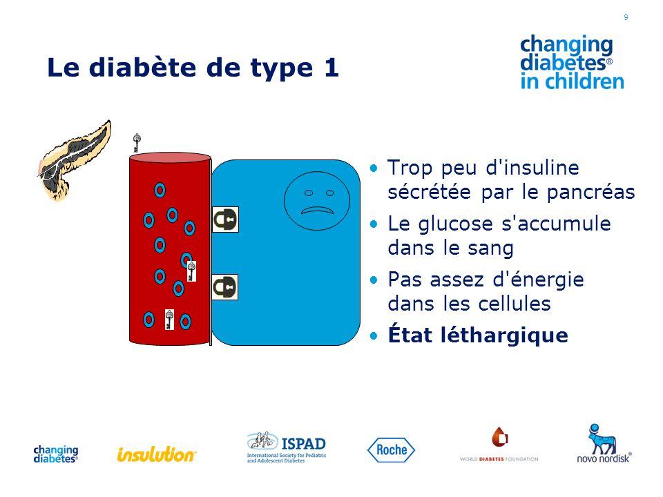 Le diabète de type 1 Trop peu d insuline sécrétée par le pancréas
