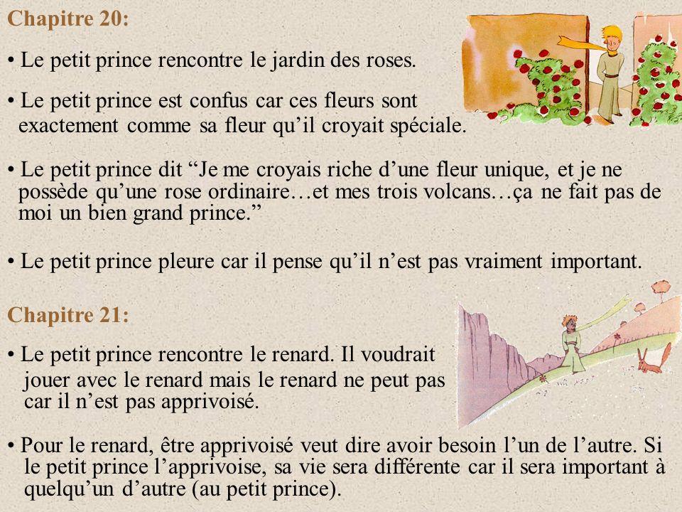 Chapitre 20: Le petit prince rencontre le jardin des roses. Le petit prince est confus car ces fleurs sont.
