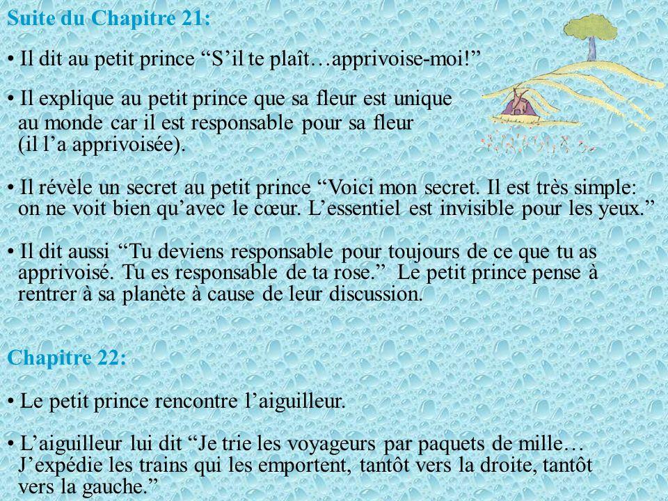 Suite du Chapitre 21: Il dit au petit prince S'il te plaît…apprivoise-moi! Il explique au petit prince que sa fleur est unique.