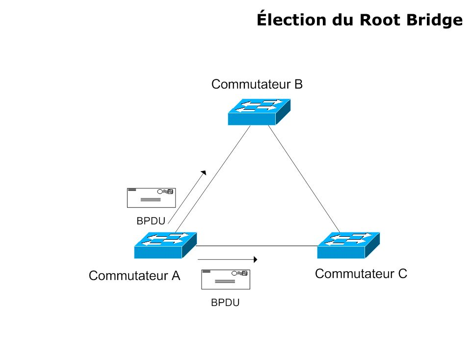 Élection du Root Bridge