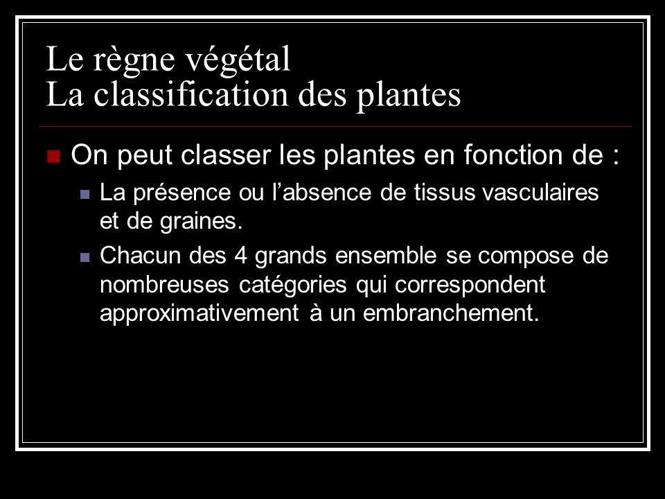 Le règne végétal La classification des plantes