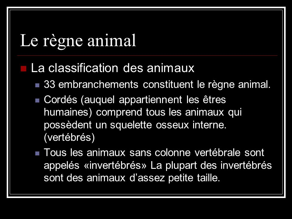 Le règne animal La classification des animaux