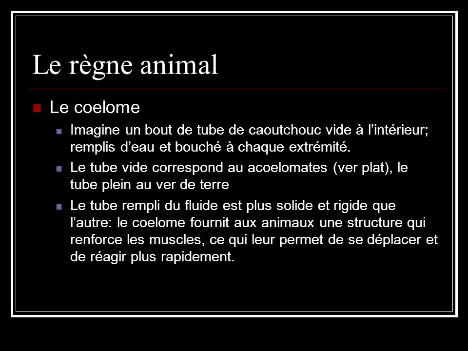 Le règne animal Le coelome
