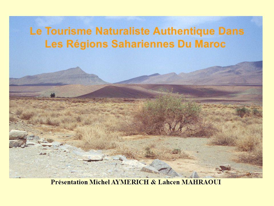 Présentation Michel AYMERICH & Lahcen MAHRAOUI