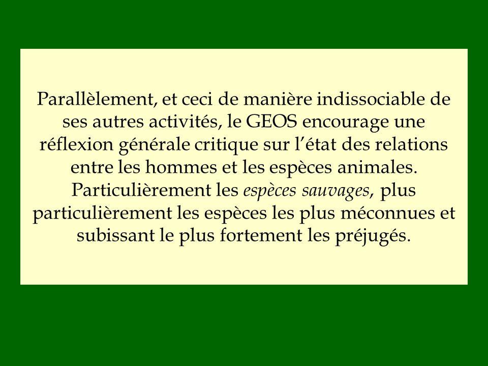 Parallèlement, et ceci de manière indissociable de ses autres activités, le GEOS encourage une réflexion générale critique sur l'état des relations entre les hommes et les espèces animales.