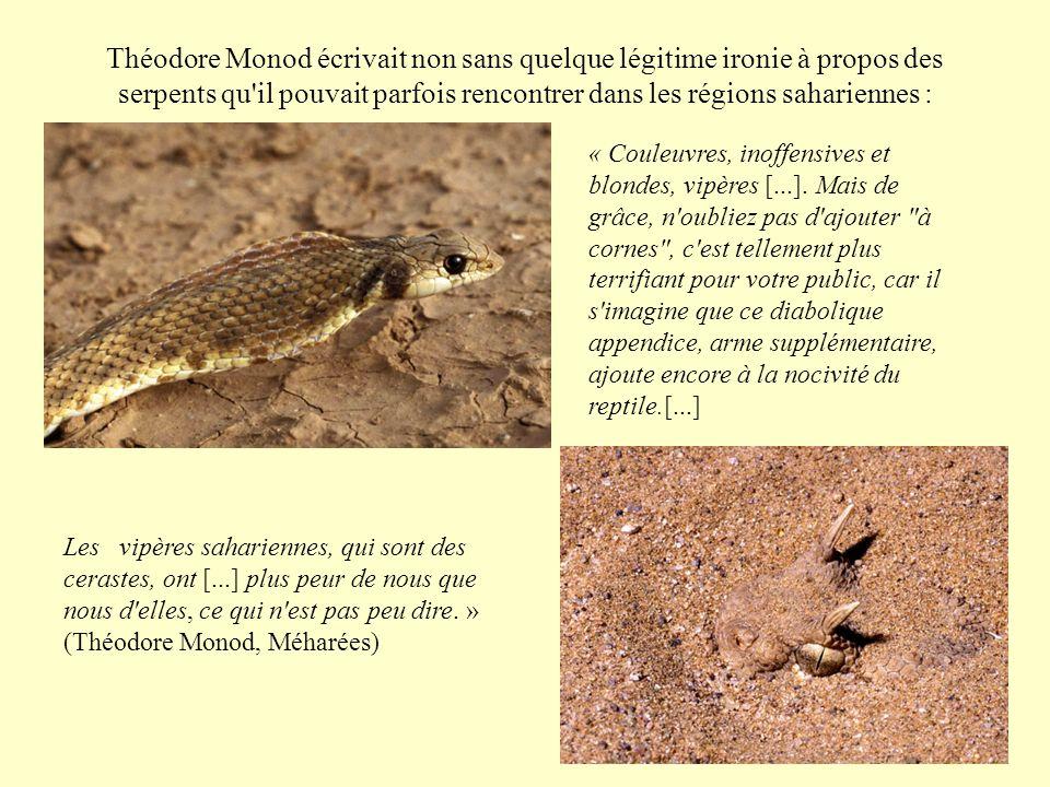 Théodore Monod écrivait non sans quelque légitime ironie à propos des serpents qu il pouvait parfois rencontrer dans les régions sahariennes :