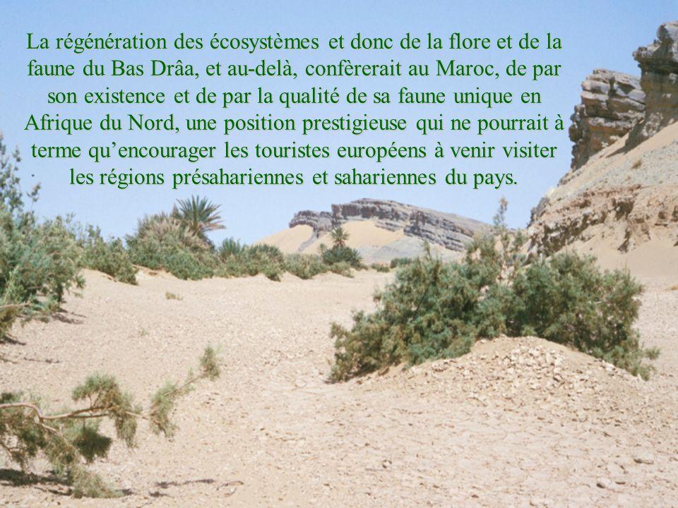 La régénération des écosystèmes et donc de la flore et de la faune du Bas Drâa, et au-delà, confèrerait au Maroc, de par son existence et de par la qualité de sa faune unique en Afrique du Nord, une position prestigieuse qui ne pourrait à terme qu'encourager les touristes européens à venir visiter les régions présahariennes et sahariennes du pays.
