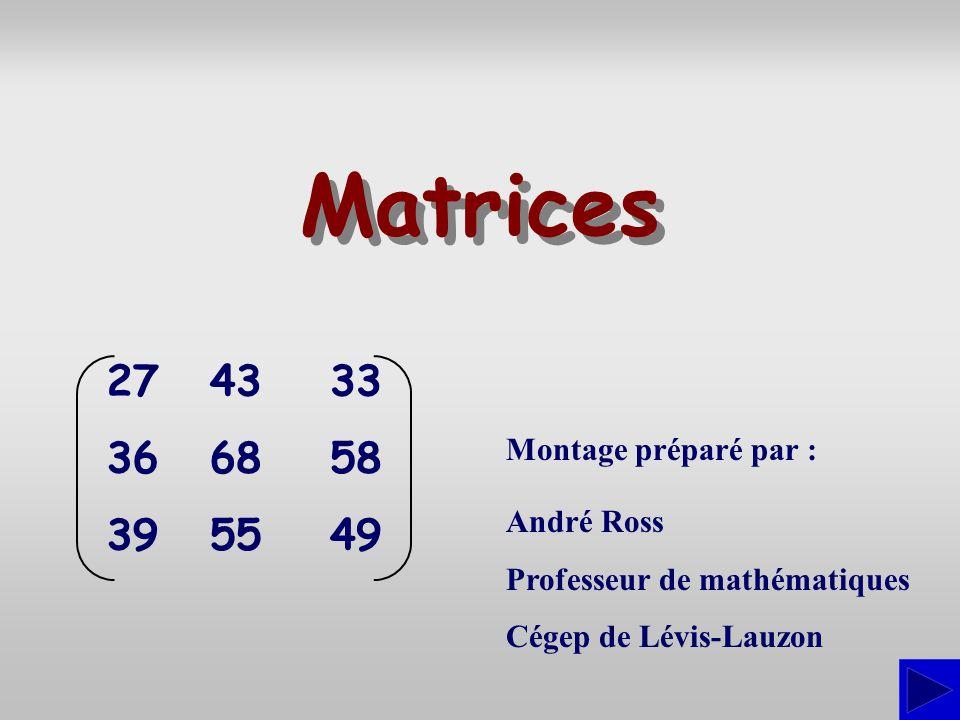 Matrices 27 36 39 43 68 55 33 58 49 Montage préparé par : André Ross