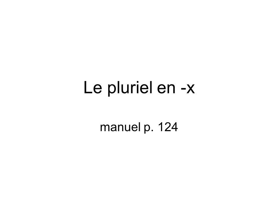 Le pluriel en -x manuel p. 124