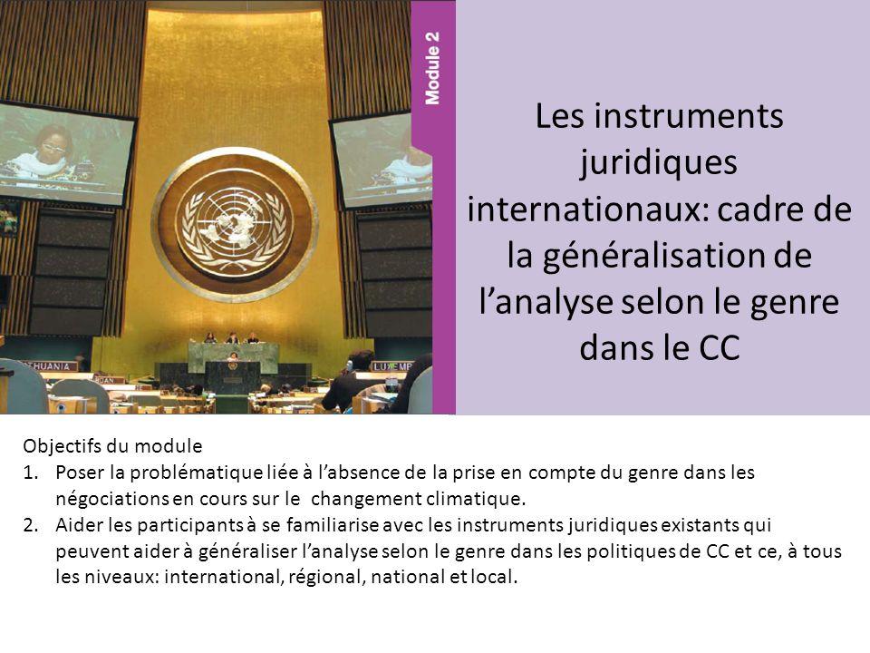 Les instruments juridiques internationaux: cadre de la généralisation de l'analyse selon le genre dans le CC