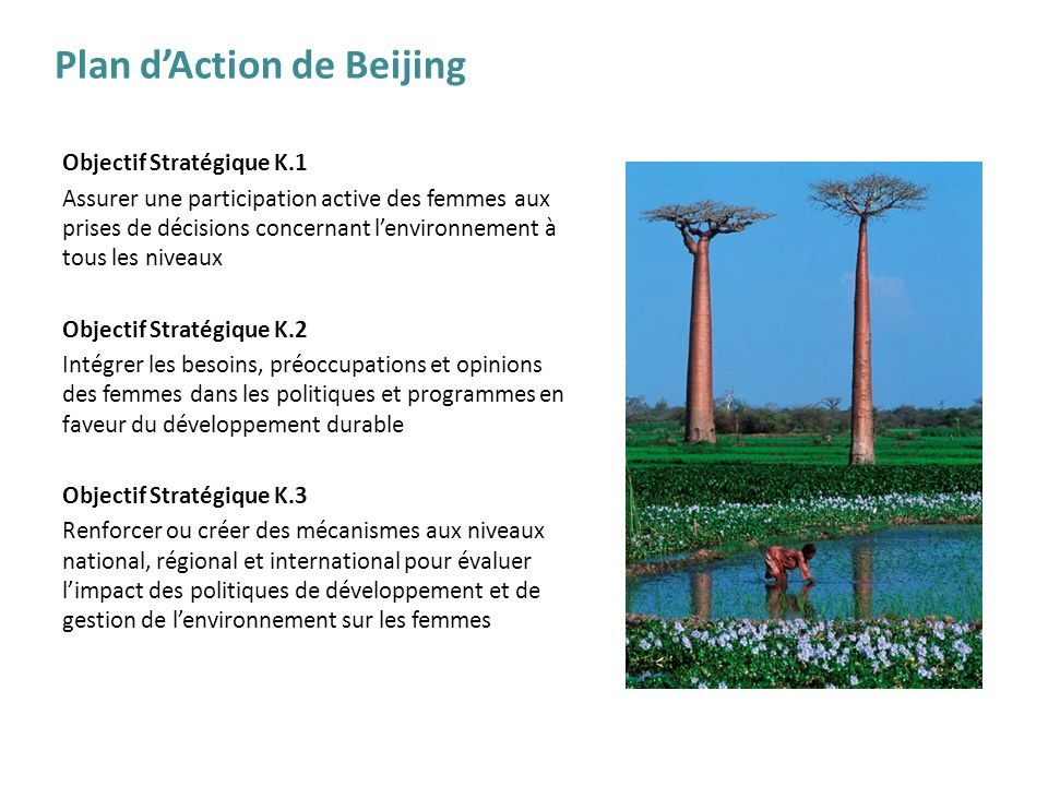 Plan d'Action de Beijing