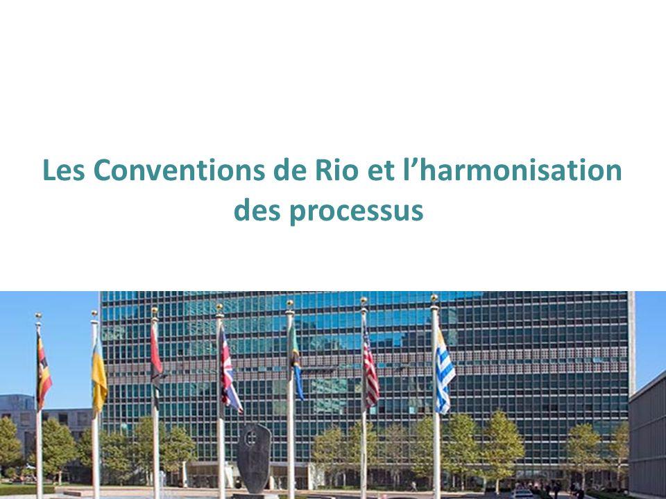Les Conventions de Rio et l'harmonisation des processus