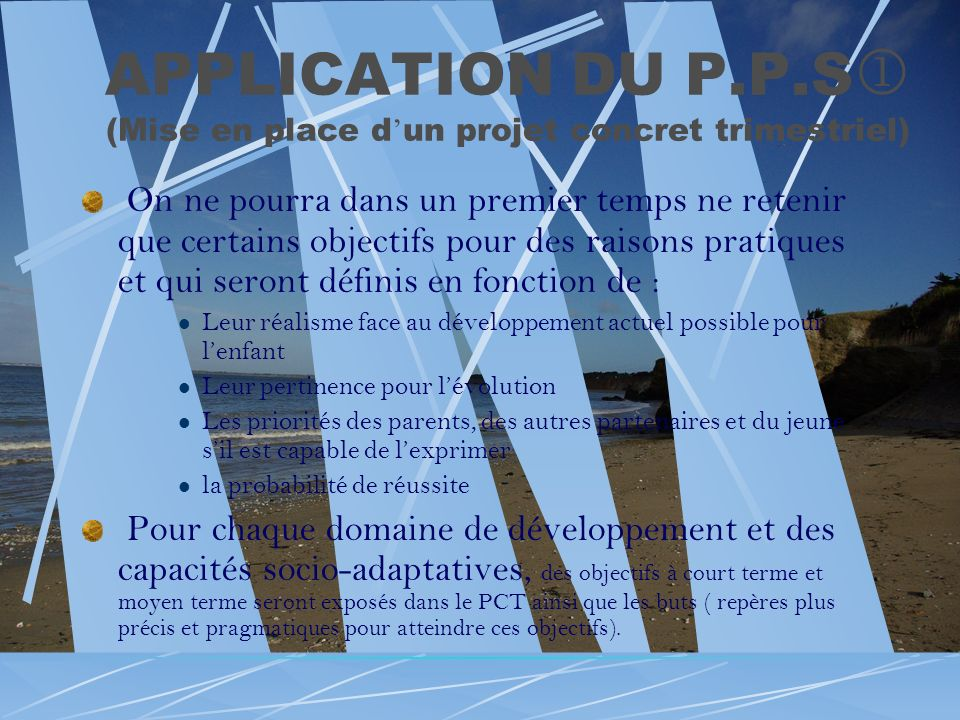 APPLICATION DU P.P.S (Mise en place d'un projet concret trimestriel)