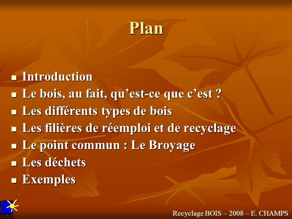 Plan Introduction Le bois, au fait, qu'est-ce que c'est