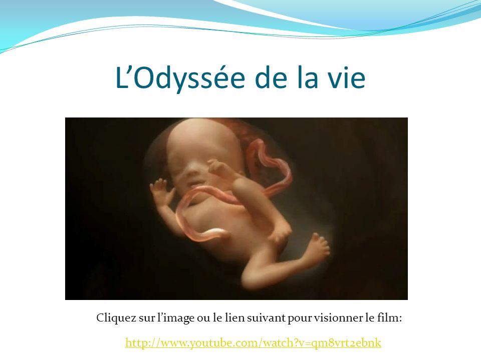 L'Odyssée de la vie Cliquez sur l'image ou le lien suivant pour visionner le film: http://www.youtube.com/watch v=qm8vrt2ebnk.