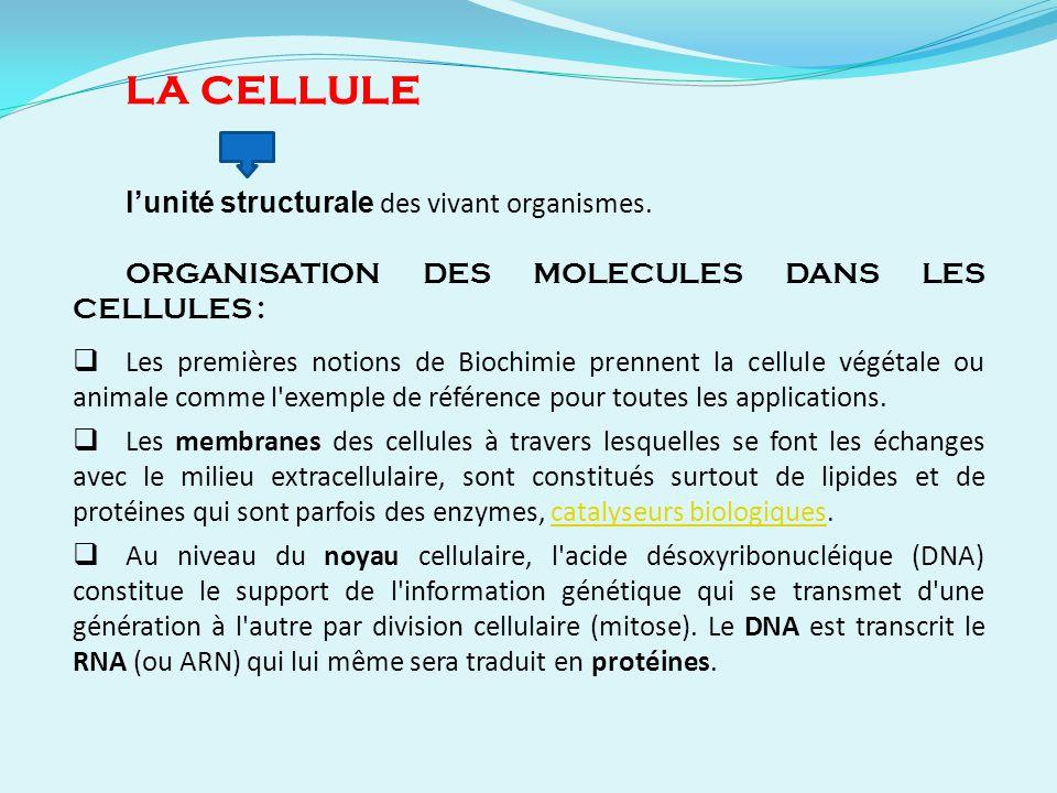 LA CELLULE l'unité structurale des vivant organismes.