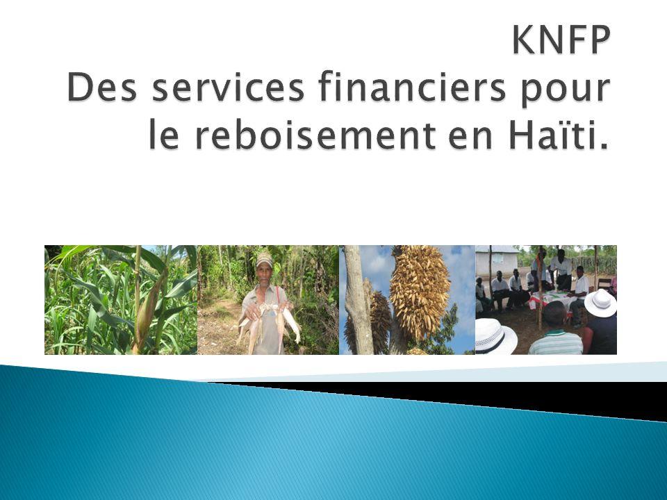 KNFP Des services financiers pour le reboisement en Haïti.