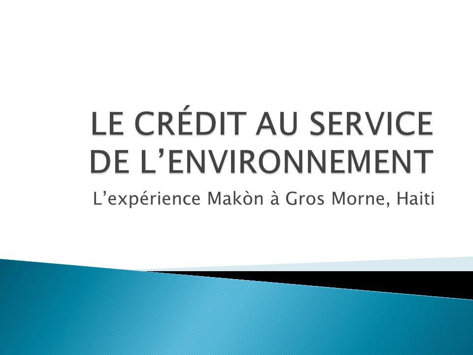 LE CRÉDIT AU SERVICE DE L'ENVIRONNEMENT