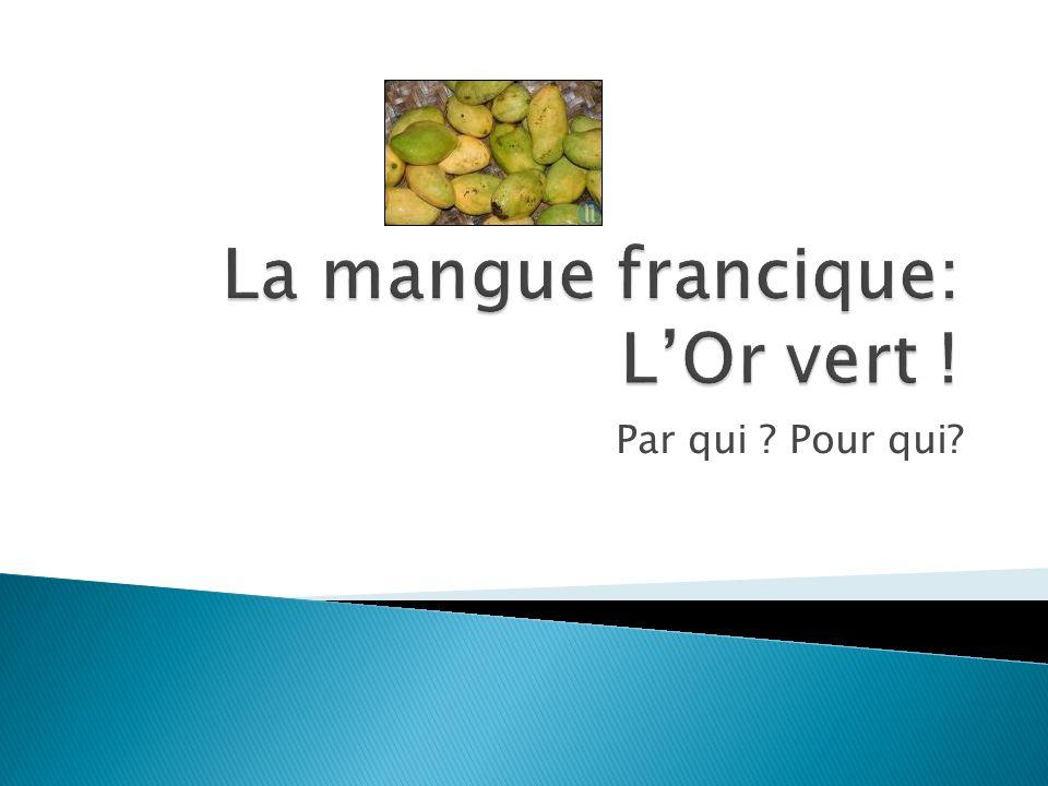La mangue francique: L'Or vert !