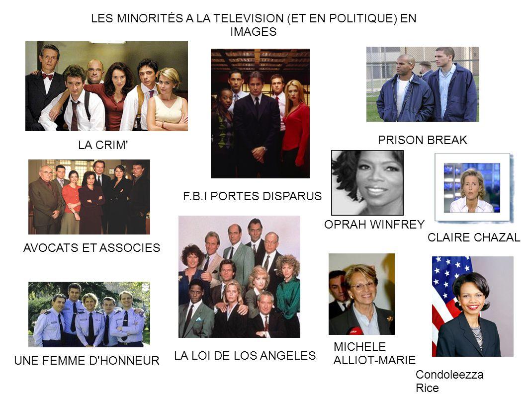 LES MINORITÉS A LA TELEVISION (ET EN POLITIQUE) EN IMAGES
