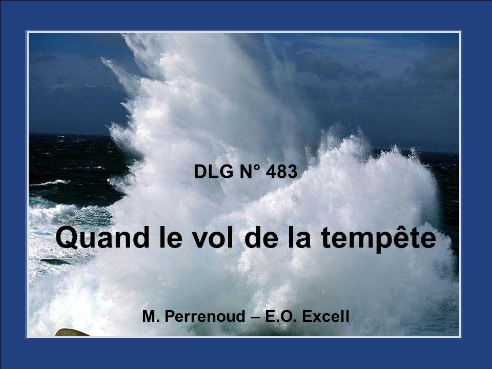 DLG N° 483 Quand le vol de la tempête