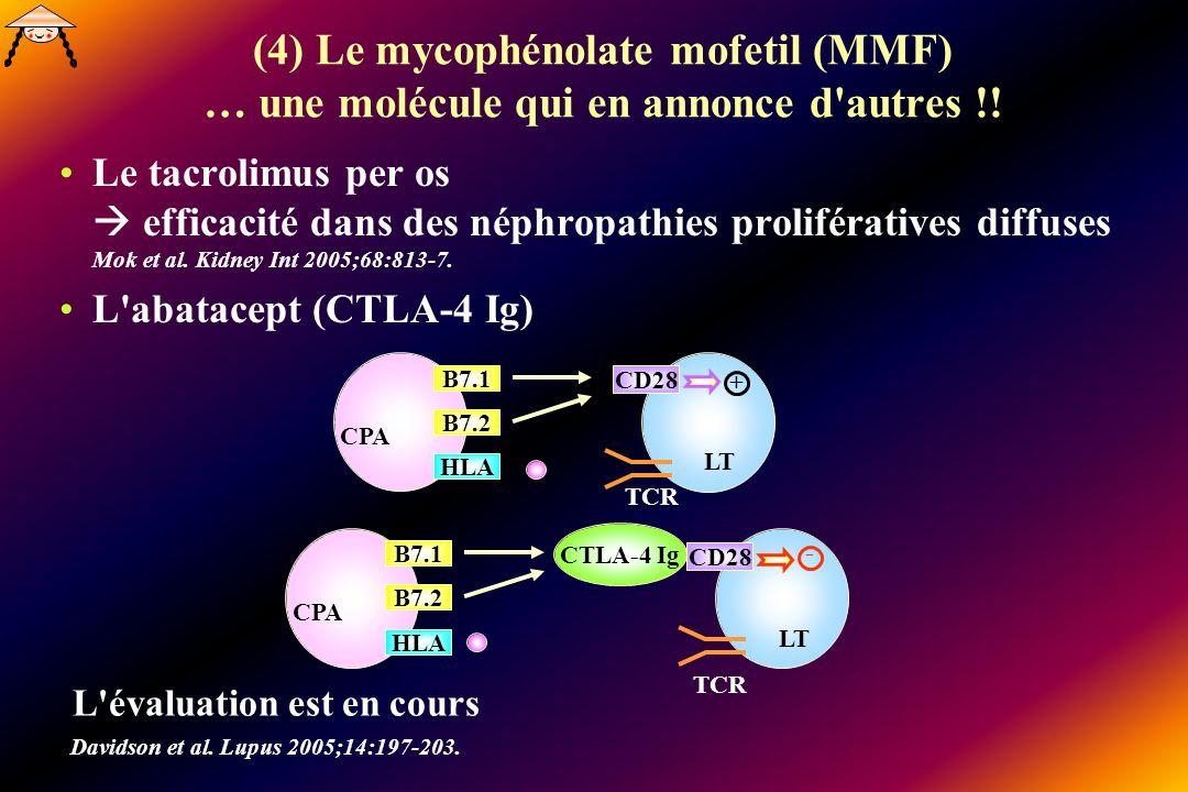 (4) Le mycophénolate mofetil (MMF) … une molécule qui en annonce d autres !!