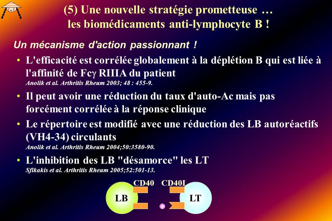 (5) Une nouvelle stratégie prometteuse … les biomédicaments anti-lymphocyte B !