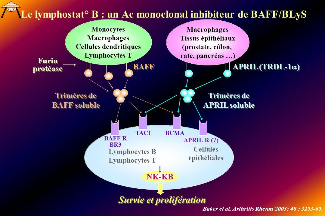 Le lymphostat° B : un Ac monoclonal inhibiteur de BAFF/BLyS