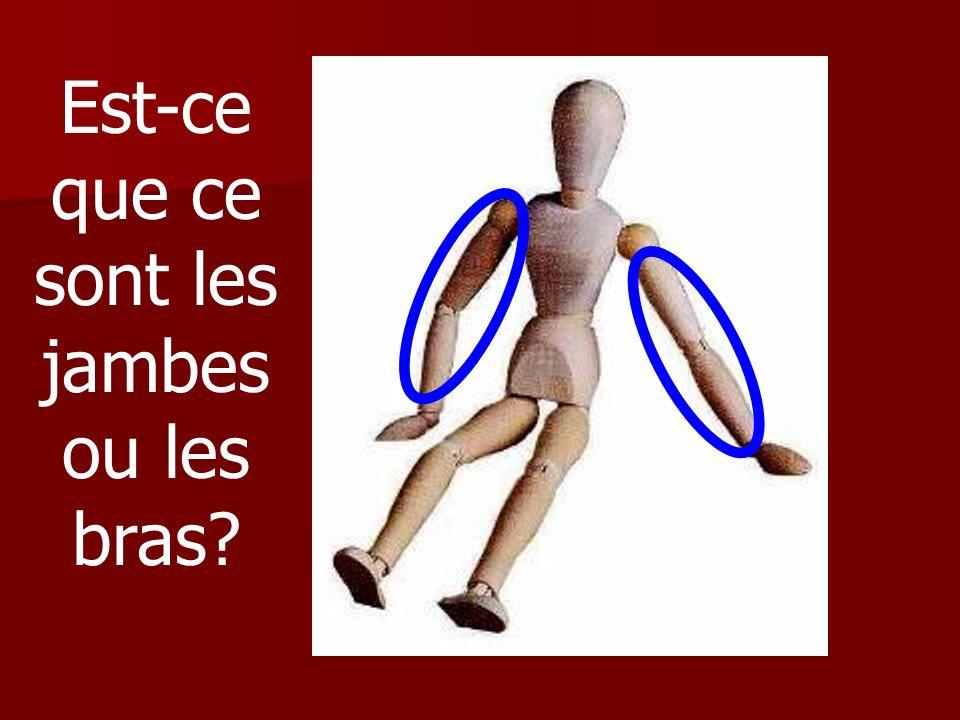Est-ce que ce sont les jambes ou les bras
