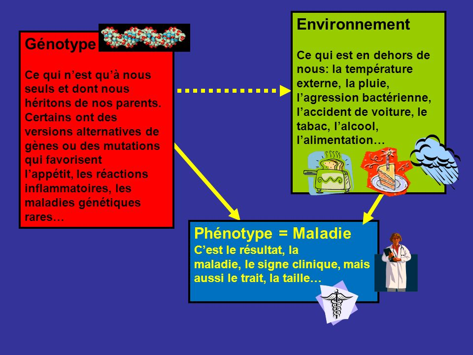 Environnement Génotype Phénotype = Maladie