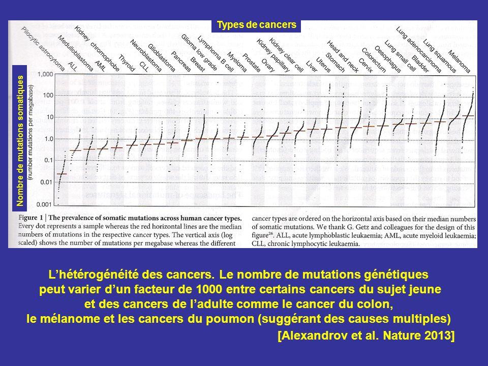 L'hétérogénéité des cancers. Le nombre de mutations génétiques