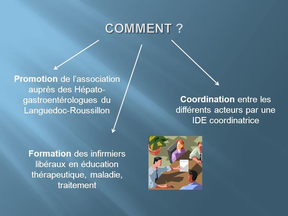 Coordination entre les différents acteurs par une IDE coordinatrice